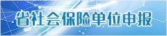 四川省社会保险网上服务大厅:http://119.6.84.89:8115/yhcms