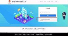 新疆增值税发票综合服务平台登陆入口